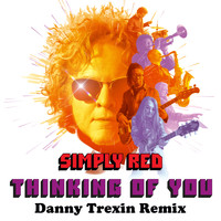 Simply Red - Thinking of You (Danny Trexin Remix)