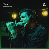 Vein - Vein on Audiotree Live