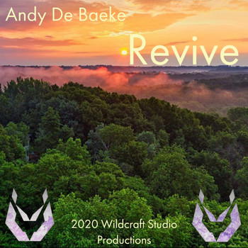 Andy De Baeke - Revive