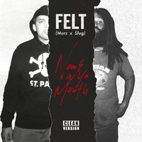 Felt - Name In Ya Mouth