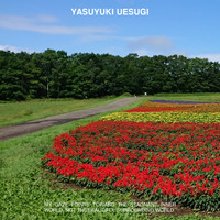 Yasuyuki Uesugi - My Gaze Points Toward The Stagnant Inner World, Not The Beautiful Surrounding World