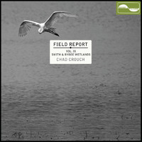 Chad Crouch - Field Report Vol IX: Smith and Bybee Wetlands