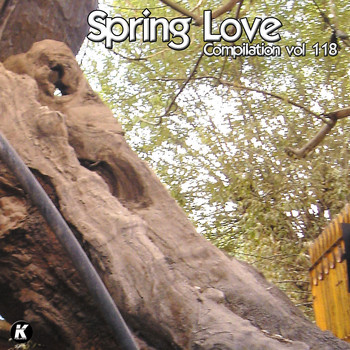 Various - SPRING LOVE COMPILATION VOL 118