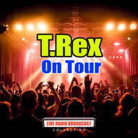 T.Rex - On Tour (Live)