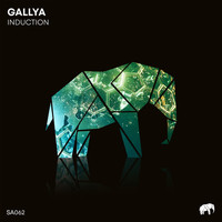 Gallya - Induction