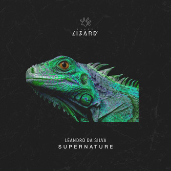 Leandro Da Silva - Supernature (Extended Mix)