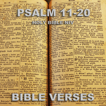 Bible Verses - Holy Bible Niv Psalm 11-20