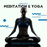 Healing Yoga Meditation Music Consort - Ambient Meditation & Yoga Sounds Collection - Background Music for Everyday Practice and Exercises