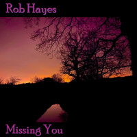 Rob Hayes - Missing You