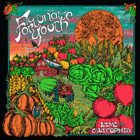 Fortunate Youth - Live From California