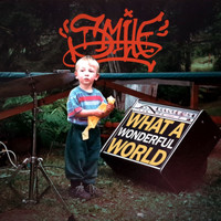 Smile - What a Wonderful World