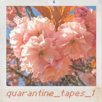 Guy - Quaratine_tapes_1