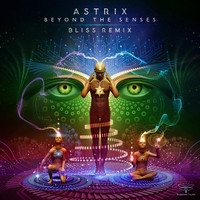Astrix - Beyond the Senses (Bliss Remix)