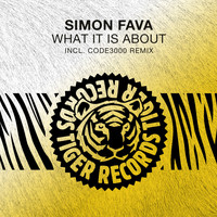 Simon Fava - What It Is About