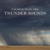Thunderstorm Global Project - Calming Rain and Thunder Sounds