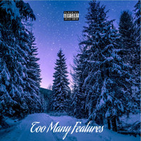 Winter - Too Many Features (Explicit)