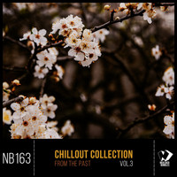 Various Artists - Chillout Collection from the Past, Vol.3