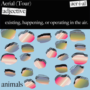 Animals - Aerial Tour