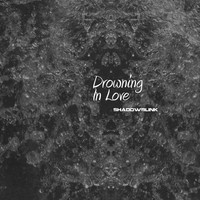 Shadowblink - Drowning In Love