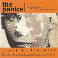 The Panics - Crack In The Wall