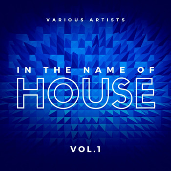 Various Artists - In the Name of House, Vol. 1