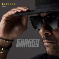 Shaggy - Angel (Hot Shot 2020) [feat. Sting]