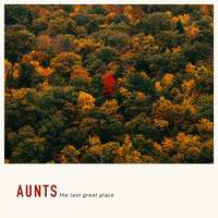 Aunts - The Last Great Place