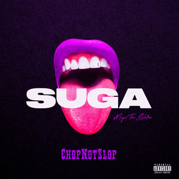 Megan thee Stallion - Suga (Chopnotslop Remix) (Explicit)