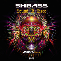 ShiBass - Sound Of Disco (Remix)