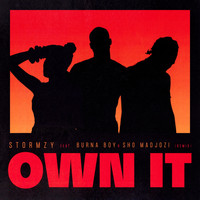 Stormzy - Own It (feat. Burna Boy & Sho Madjozi) [Remix]