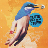 Better Lost Than Stupid - Wild Slide (Remixes)