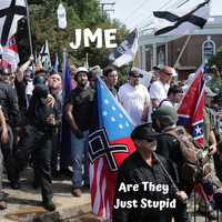 Jme - Are They Just Stupid