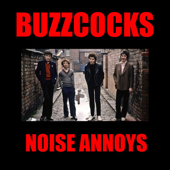 Buzzcocks - Noise Annoys (Explicit)