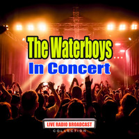 The Waterboys - In Concert (Live)