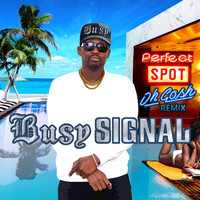 Busy Signal - Perfect Spot (Oh Gosh Remix)