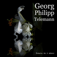 Georg Philipp Telemann - Sonata in A minor