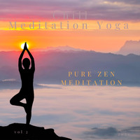 Chill Meditation Yoga - Pure Zen Meditation