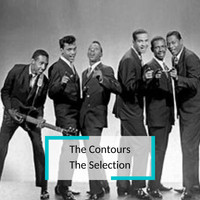 The Contours - The Contours - The Selection