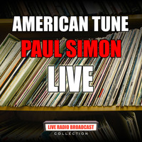 Paul Simon - American Tune (Live)