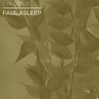 Ilya Gerus - Fall Asleep