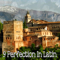 Instrumental - 9 Perfection in Latin