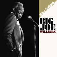 Big Joe Williams - Nine Strings