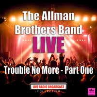 The Allman Brothers Band - Trouble No More - Part One (Live)