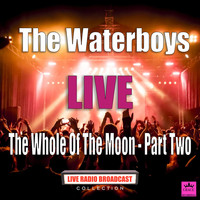 The Waterboys - The Whole Of The Moon - Part Two (Live)