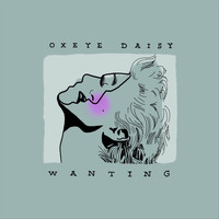 Oxeye Daisy - Wanting