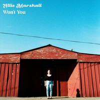 Allie Marshall - Won't You
