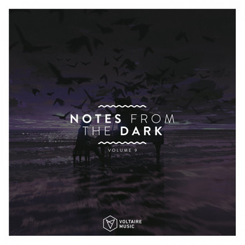 Various Artists - Notes from the Dark, Vol. 9 (Explicit)