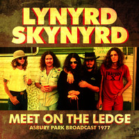Lynyrd Skynyrd - Meet On The Ledge