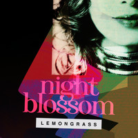 Lemongrass - Night Blossom