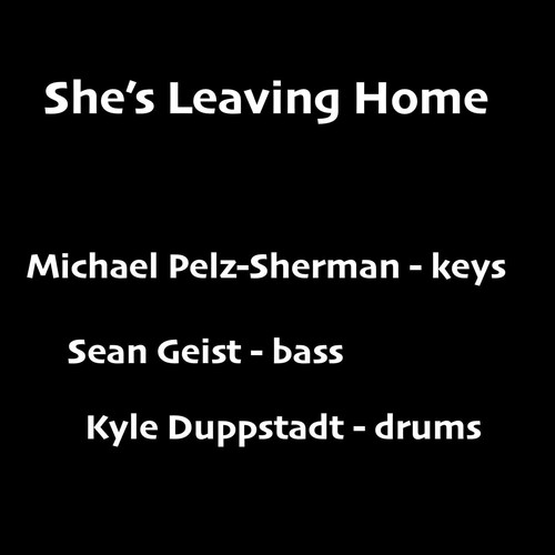 Michael Pelz-Sherman MP3 Album She's Leaving Home (feat. Sean Geist & Kyle Duppstadt)